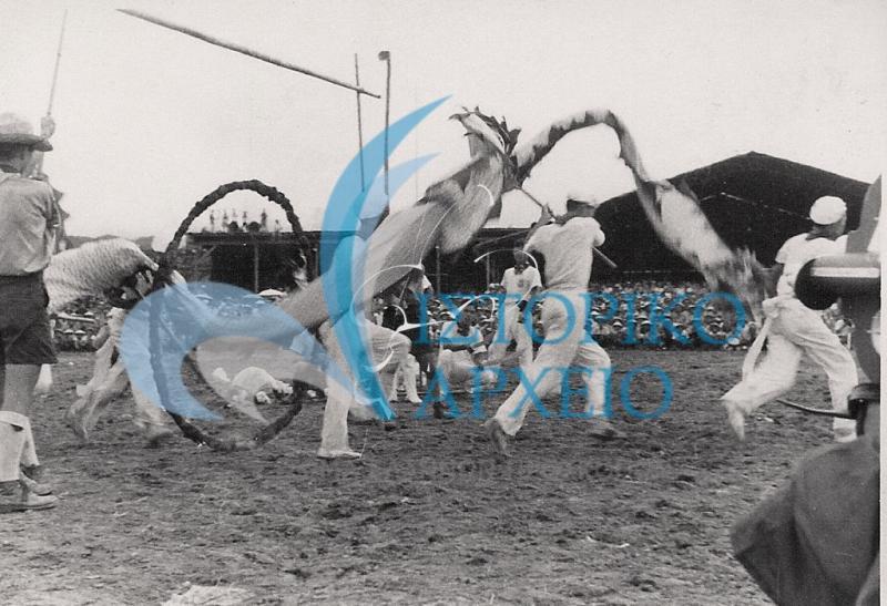 Φωτογραφίες από την ελληνική αποστολή στο 10ο Παγκόσμιο Προσκοπικό Τζάμπορη στην Mt. Makiling των Φιλιππίνων το 1959.